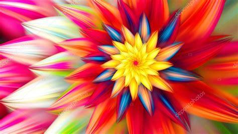 immagini di fiori esotici fiore esotico danza dei petali di fiori foto stock
