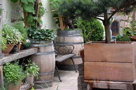 Sichtschutz Immergr N Winterhart 1853 by Winterharte Gr 228 Ser Als Sichtschutz Sichtschutz Im Garten