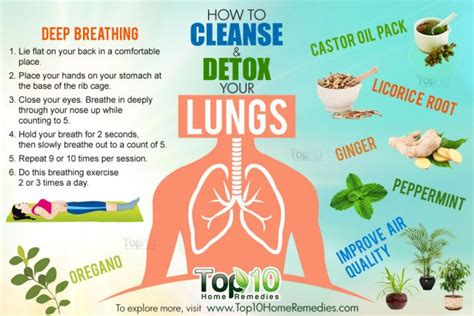 Best Healthy Way To Detox Your by The Best Way To Prevent Lung Cancer They Don T Want You To