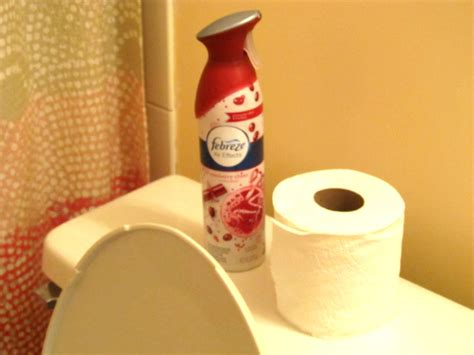 bathroom smell eliminate the 12stinks of christmas with febreze holiday