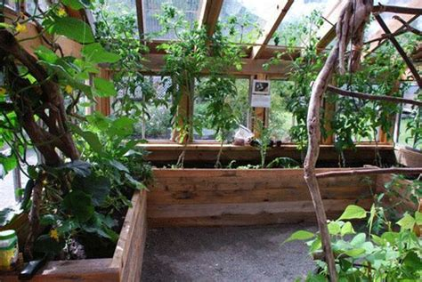 Inside Greenhouse Ideas | tips on building your greenhouse my greenhouse plans