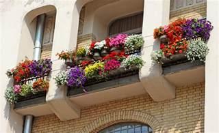 Wrought iron window box ideas garden tub window treatment ideas full