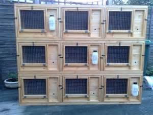 rabbit hutches world bespoke hutches for rabbits rabbit hutch world