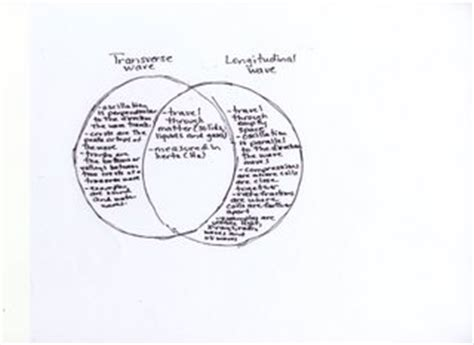 kinetic and potential energy venn diagram compare and contrast venn diagram compare free engine