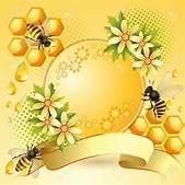 Honeycomb clipa...