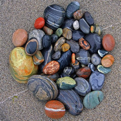 best 25 rock collection ideas on small garden