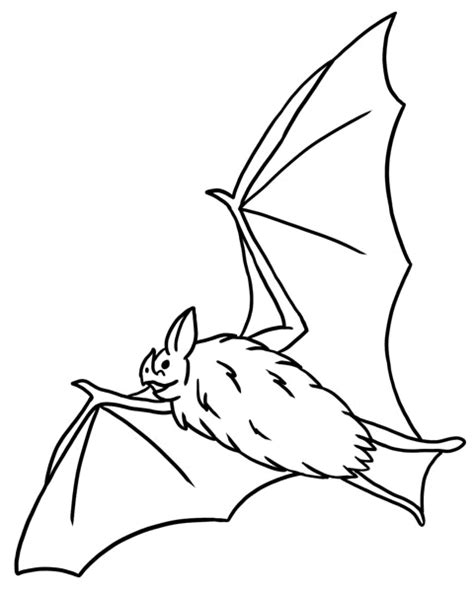 bat coloring pages coloring pages to print