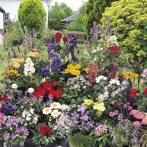 Johnsons Home And Garden by Johnsons Seeds Perennial Year Flower Mixed At Wilko