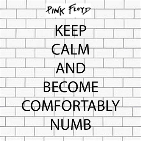 i am comfortably numb 17 best ideas about comfortably numb on pinterest pink