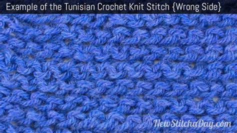 tunisian crochet complete and easy guide to awesome tunisian crochet patterns and projects tunisian crochet book crochet stitches books how to crochet the tunisian crochet purl stitch new