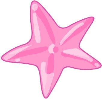 Dimensions starfish clip art clipart panda free clipart images