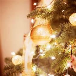 do christmas trees cause allergies sylvane