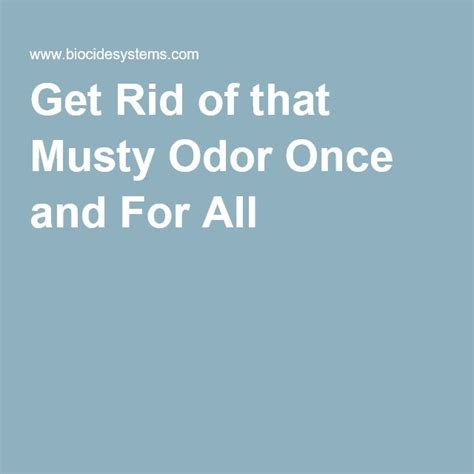 how to get rid of musty smell in furniture get rid of that musty odor once and for all real estate