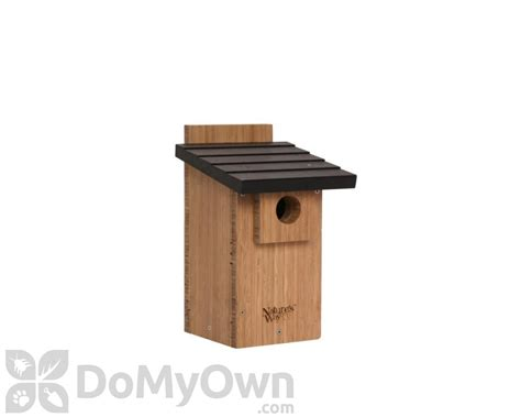 window bird house reviews natures way bamboo bluebird with viewing window bird house bwh4
