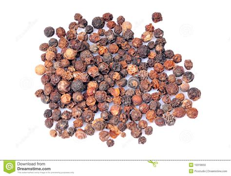 black pepper sunflower seeds black pepper seeds stock photo image 10318650