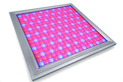 and blue led grow lights and blue waterproof led grow lights for vegetables