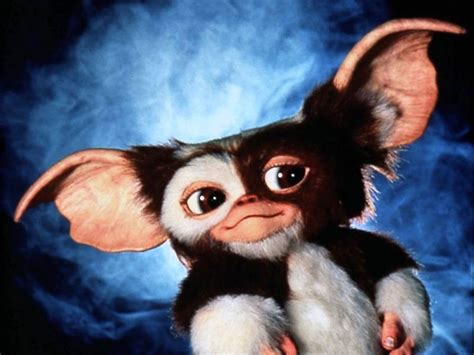 the world s best photos of gremlins and gremlins reboot director of original joe dante says makes don t