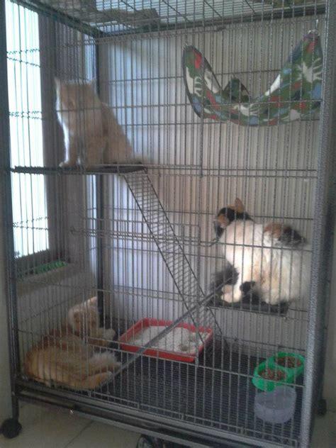Kandang Kucing 3 Tingkat kandang kucing 2 tingkat masih mulus gan nego kaskus