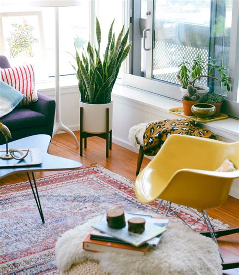 plants for home decor how to decorate with houseplants best houseplant decor
