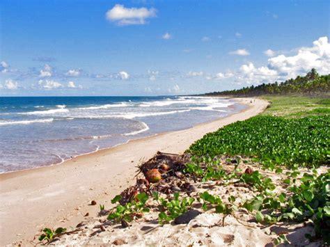 les plages autour de salvador de bahia chambres d h 244 tes