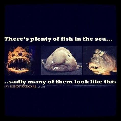 Fish In The Sea Meme - 1000 bilder zu blobfish forever omc auf pinterest