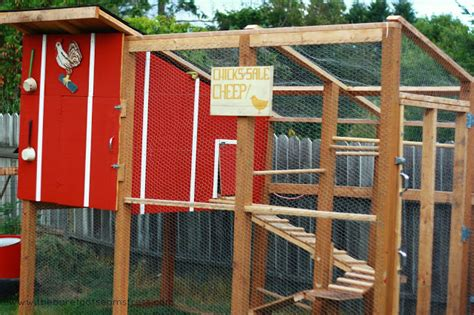 ideas build a chicken coop home depot abiel storage