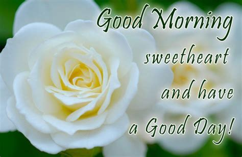 sweet and morning quotes and messages sweet morning messages for quotes