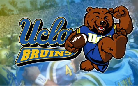 Ucla Background Check We On
