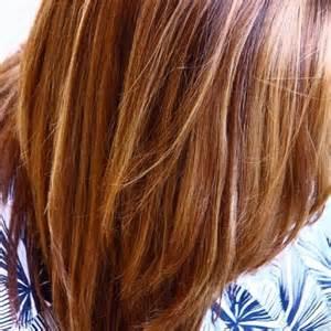 honey brown haie highlights hair brown hair with honey highlights luxurious wodip com