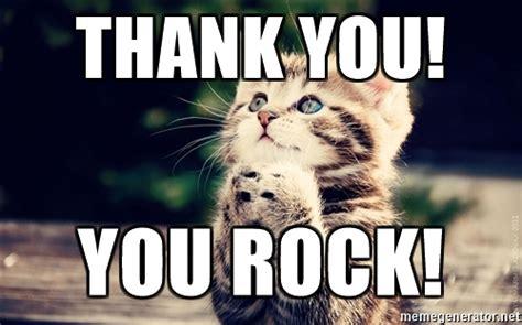 You Rock Meme - thank you you rock thank you cat meme generator
