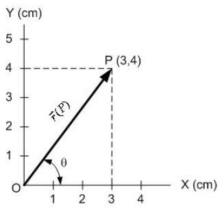 vektor posisi fisika zone