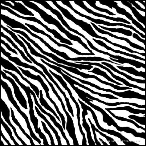 Shark Home Decor Zebra Skin Www Pixshark Com Images Galleries With A Bite