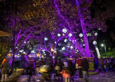 la zoo lights groupon l a zoo lights