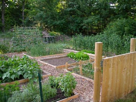 raised bed vegetable garden plans brick raised vegetable beds modern diy art design collection