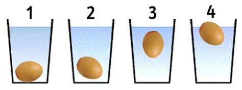 come cucinare l albume d uovo trucchi e consigli sulle uova segreti in cucina