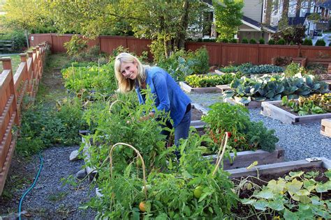 Fix Garden by Common Garden Problems And How To Fix Them Stay At Home