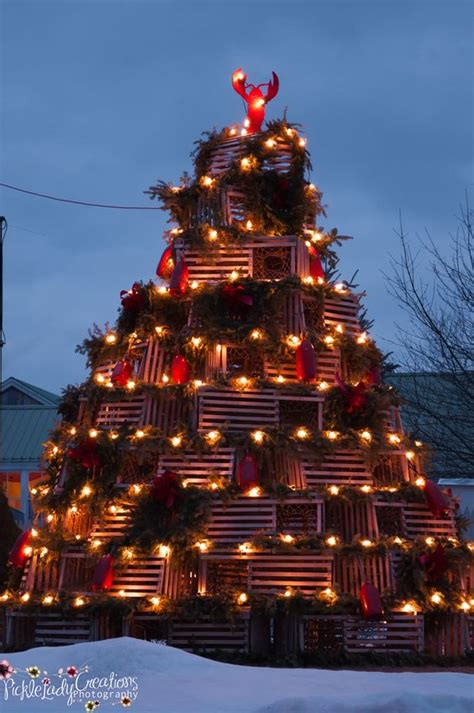 lobster trap lobsters and christmas trees on pinterest