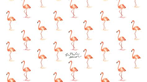 flamingo macbook wallpaper wallpaper page 2 she does art