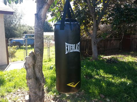 how to hang a punching bag from the ceiling how to hang a punching bag from a useless tree