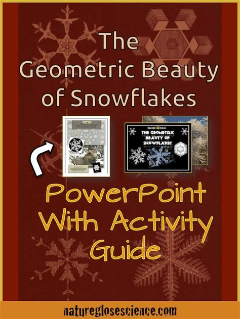 snowflake bentley worksheets snowflake math winter arts and crafts for kids how many