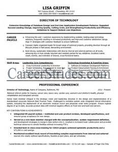 Resume Exle For It by It Director Resume Sle Exle