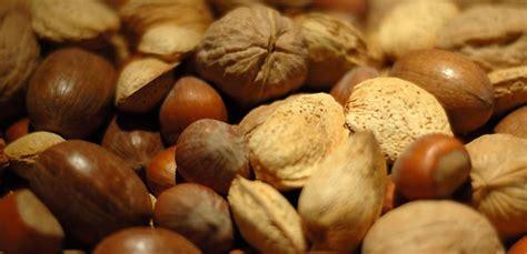 alimentos que contienen tript fano 7 alimentos con tript 243 fano