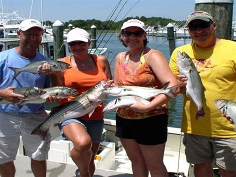 charter boat fishing rehoboth beach gale force charters visit delaware beaches rehoboth