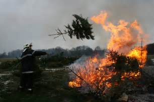 cooking sausages and burning the trees in gland living