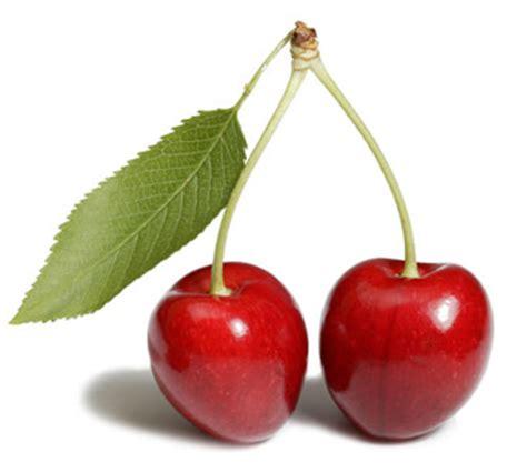 cereza guinda cherry cereza nutricion en ferato