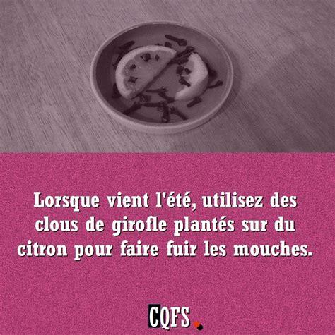 Citron Clou De Girofle Odeur by Quelques Liens Utiles