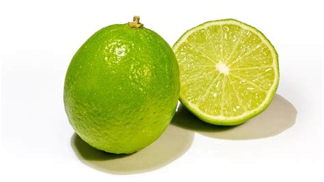 Jual Bibit Jeruk Nipis Samarinda harga jual bibit jeruk nipis di tanjungbalai java landscape