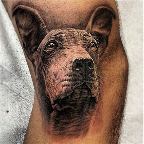 peruvian tattoos peruvian hairless by stefano alcantara tattoos