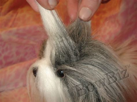 shih tzu top knot accessories 67 best images about shih tzu pix on chaka khan puppys and summer haircuts