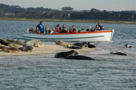 beans boats 28 best images about north norfolk things to do on